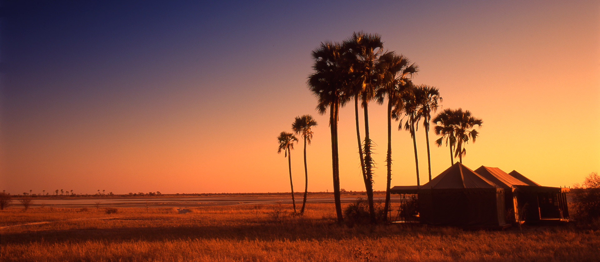 Makgadikgadi Pan Sunset And Wild Life