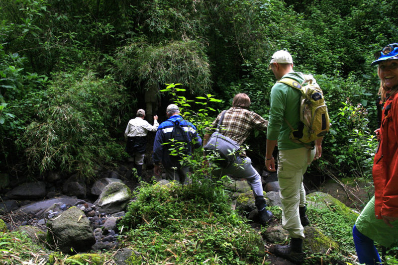 gorillas and volcanoes -uganda-packages-tours-journey-in-style-gallery-crossing-a-small-mountain-stream