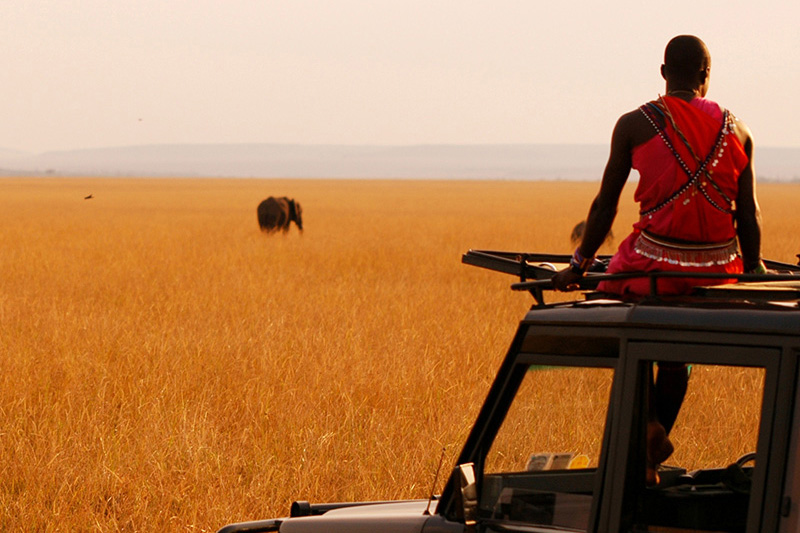 kenya voyager amboseli-national-park-packages-kenya-journey-in-style-africa-elephants-game-drive-mara-bush-houses