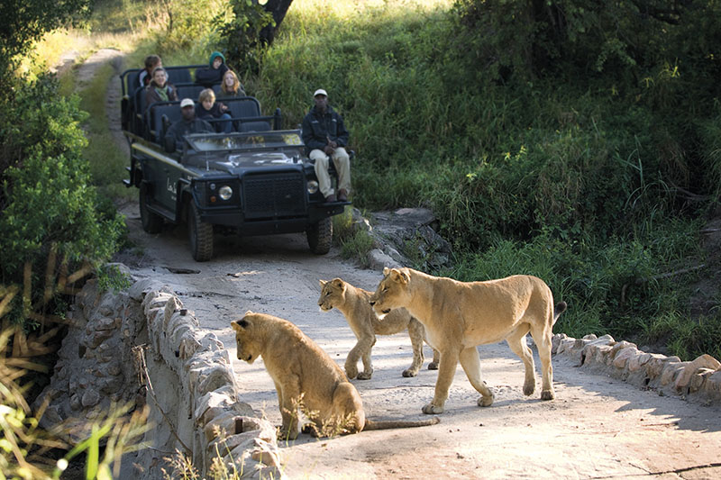 Kruger to Mozambique
