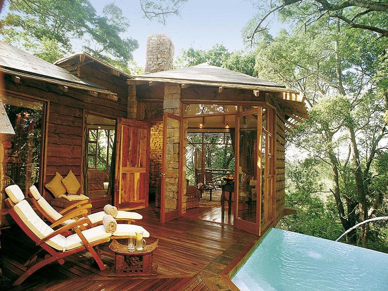 tsala treetop lodge south africa