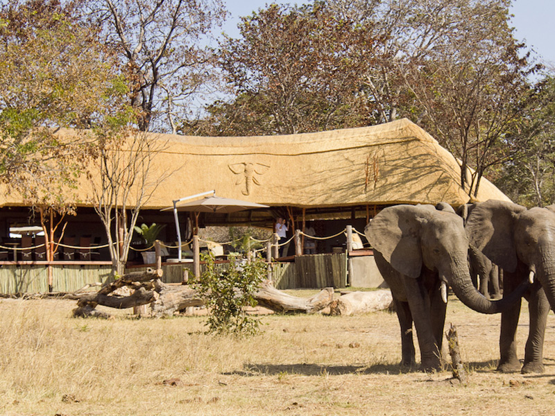 khulu ivory lodge - hwange-national-park-accommodations-zimbabwe-destinations-journey-in-style-southern-africa