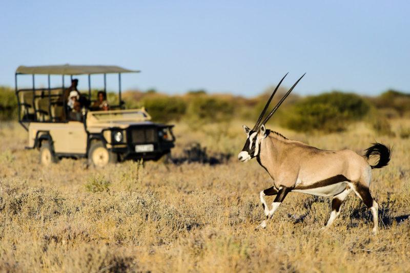 classic-botswana-luxury-linyanti-and-savuti-packages-botswana-destinations-journey-in-style-southern-africa-kalahari-game-drive