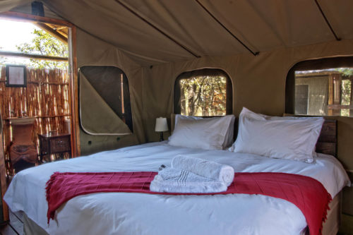 shindzela-tented-safari-camp-kruger-surrounding-areas-accommodations-south-africa-journey-in-style-double-safari-tent