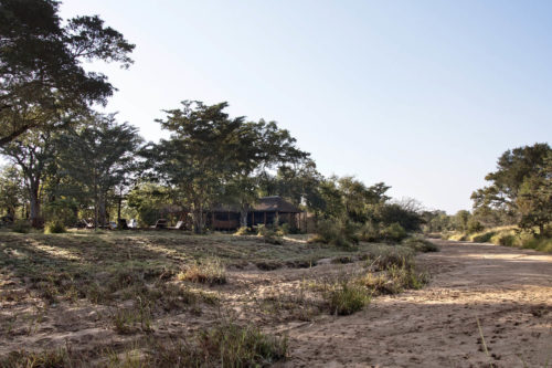 shindzela-tented-safari-camp-kruger-surrounding-areas-accommodations-south-africa-journey-in-style-view-from-riverbed