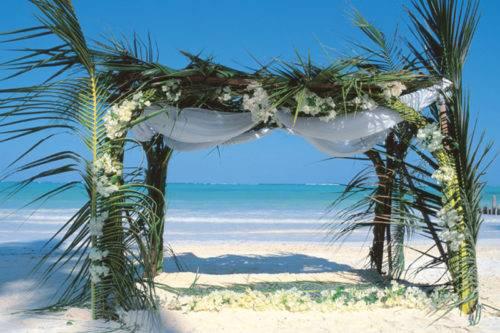 Canopy-at-The-Palms-Zanzibar