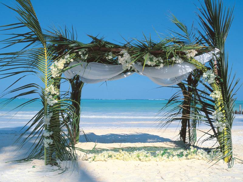 Canopy at The Palms Zanzibar