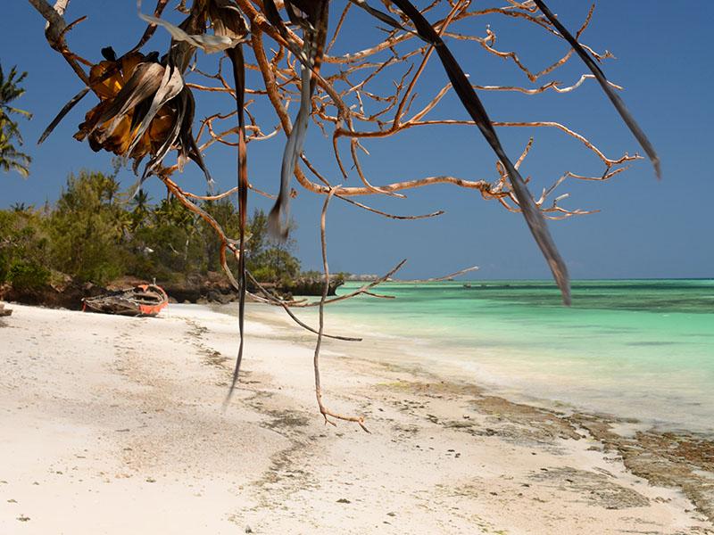 South West Coast Zanzibar packages
